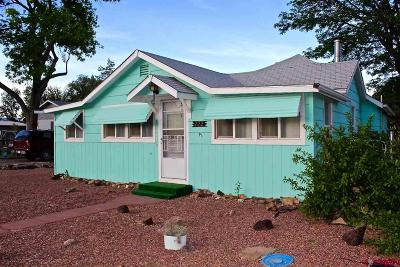 Delta Single Family Home UC/Contingent/Call LB: 222 Leon Street