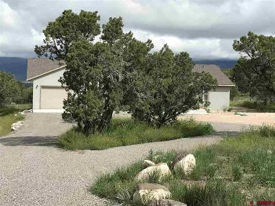 Cedaredge Single Family Home For Sale: 16849 Ember Road