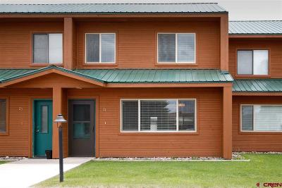 Pagosa Springs Condo/Townhouse For Sale: 302 Talisman Drive #24