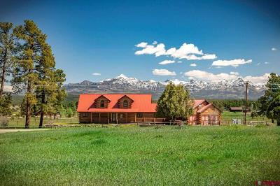 Pagosa Springs Single Family Home For Sale: 464 Dichoso Street