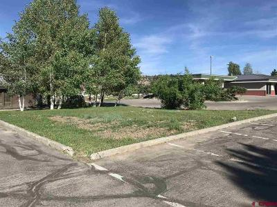 Durango Residential Lots & Land For Sale: 555 S Camino Del Rio