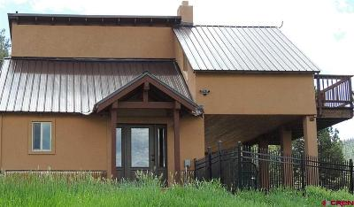 Pagosa Springs Single Family Home For Sale: 1251 Cr 139