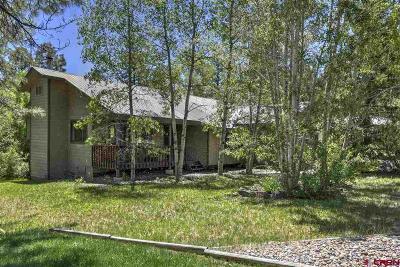 Durango Single Family Home For Sale: 142 Cedar Drive