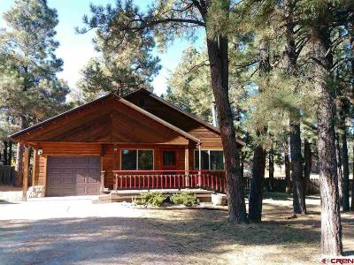 Pagosa Springs Single Family Home For Sale: 47 Palm Court