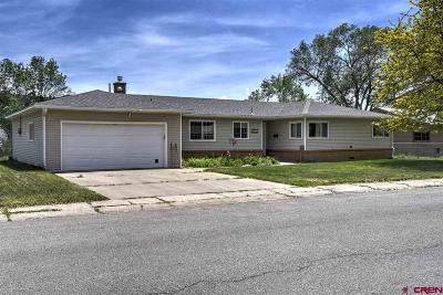La Plata County Single Family Home For Auction: 1824 Crestview Drive