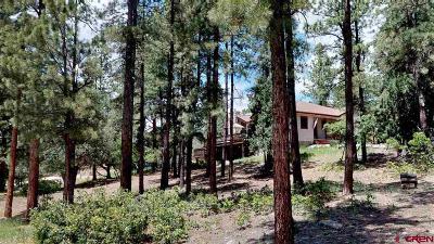 La Plata County Single Family Home For Sale: 29 Perins Vista Drive