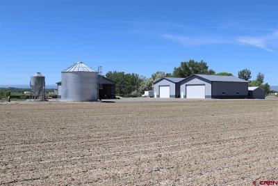 Delta Single Family Home NEW: 18005 Homestead Road