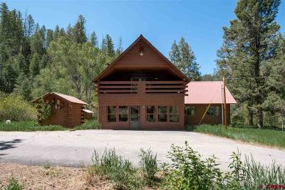 Pagosa Springs Single Family Home For Sale: 120 Gully Place