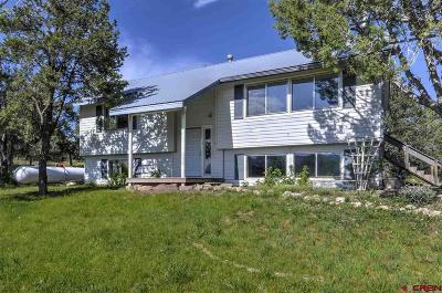 Ignacio Single Family Home For Sale: 937 Cr 336