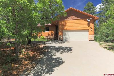 Pagosa Springs Single Family Home For Sale: 52 Granada Drive