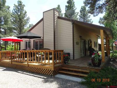 Pagosa Springs Single Family Home For Sale: 122 Dutton Drive