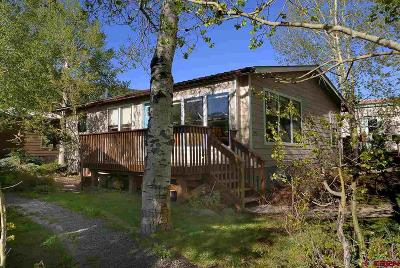 Crested Butte Mobile/Manufactured For Sale: 120 Butte Avenue