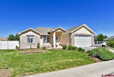 Montrose Single Family Home NEW: 2624 Glen Mor Drive