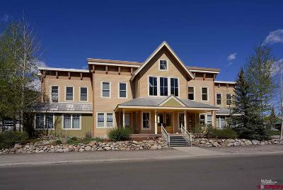 Gunnison County Commercial For Sale: 427 Belleview Avenue #103 &