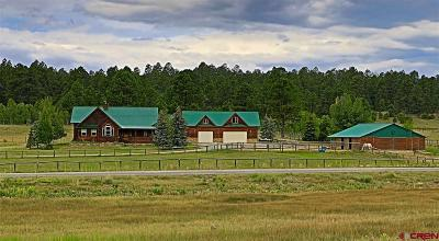 Pagosa Springs Single Family Home For Sale: 5970 N Pagosa Boulevard