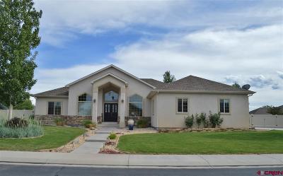 Delta Single Family Home NEW: 1242 Sunrise Drive