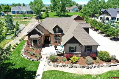 Montrose Single Family Home For Sale: 4009 Waterfall Drive