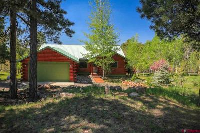 Pagosa Springs Single Family Home For Sale: 404 Monte Vista Drive