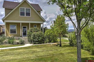 La Plata County Single Family Home For Sale: 324 Clear Spring Avenue