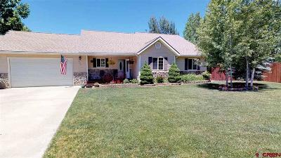 Bayfield Single Family Home For Sale: 303 Meadows Circle