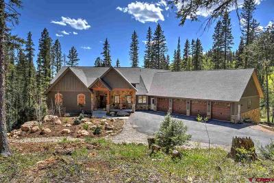 Durango Single Family Home For Sale: 53072 Hwy 550