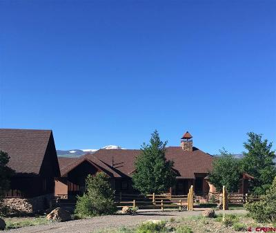 South Fork CO Single Family Home For Sale: $929,900