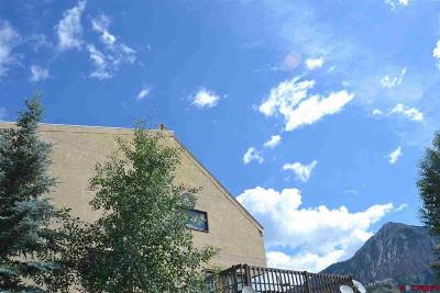 Crested Butte Condo/Townhouse For Sale: 117 7th Street Street #9