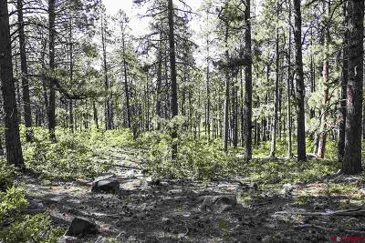 Bayfield Residential Lots & Land For Sale: 1232 Pine Tree Drive