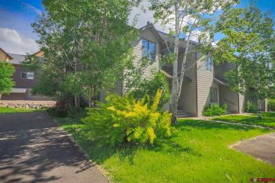 Pagosa Springs Condo/Townhouse For Sale: 60 Davis Cup Drive #102