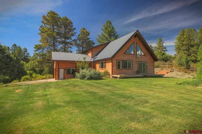 Pagosa Springs Single Family Home For Sale: 175 Engleman Place