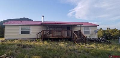 South Fork Mobile/Manufactured For Sale: 642 Milner Pass Road