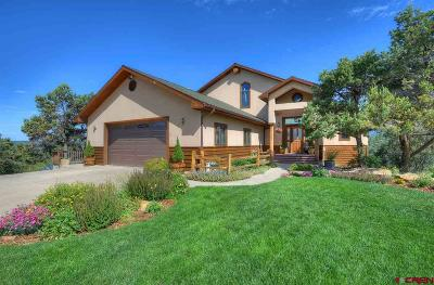 La Plata County Single Family Home For Sale: 187 King Mountain Road