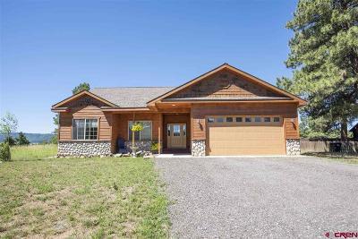Pagosa Springs Single Family Home For Sale: 50 Woodsman Drive