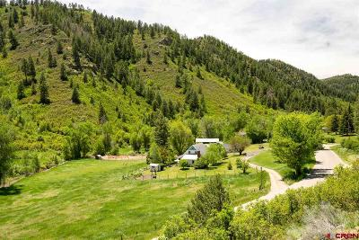 Durango Single Family Home For Sale: 2261 County Road 207