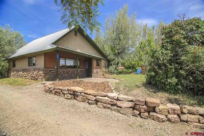 Pagosa Springs Single Family Home For Sale: 149 S 7th Street