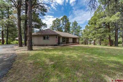 Pagosa Springs Single Family Home For Sale: 263 Pines Drive