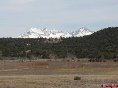 Mancos Residential Lots & Land For Sale: Road 30.1 - Lot #14