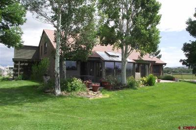 Olathe Single Family Home For Sale: 58864 Herman Road