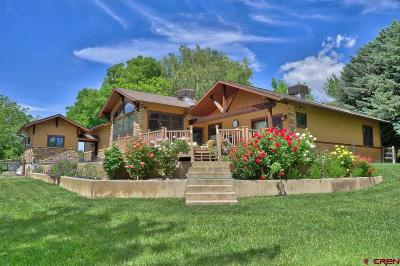 Paonia Single Family Home For Sale: 15364 Amsbury Road