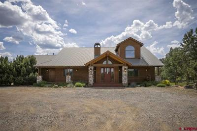 Durango Single Family Home For Sale: 806 Squaw Apple Road