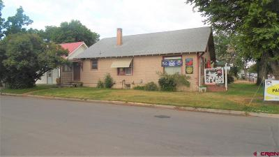 Montrose Single Family Home For Sale: 302 W Main Street