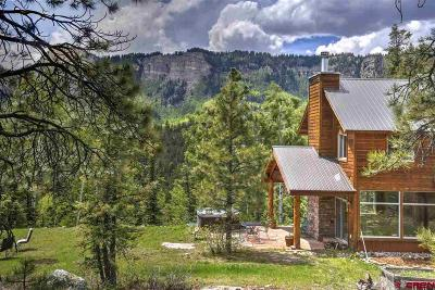 La Plata County Single Family Home For Sale: 2001 Lake Purgatory Drive