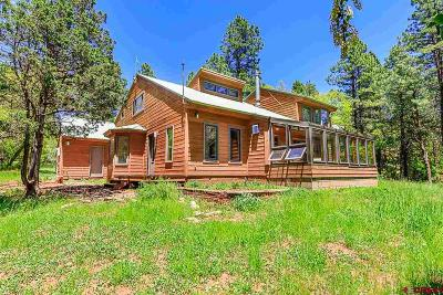 Durango Single Family Home For Sale: 195 Aspen Lane