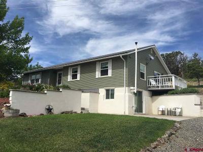 Cedaredge Single Family Home For Sale: 24763 Rhapsody Road