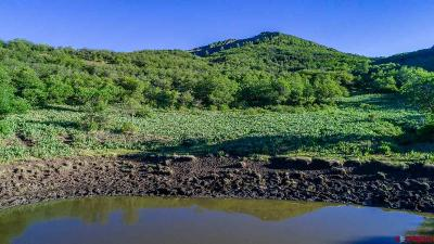 Dolores Residential Lots & Land For Sale: Forest Service Rd 533