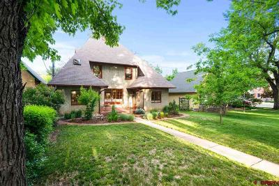La Plata County Single Family Home For Sale: 722 E 3rd Avenue