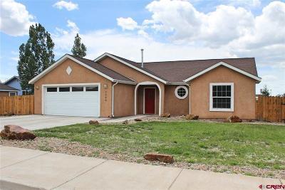 Alamosa Single Family Home UC/Contingent/Call LB: 2500 Vigil Way