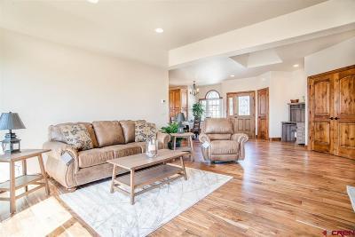 Montrose Condo/Townhouse For Sale: 2816 Stoney Creek Lane