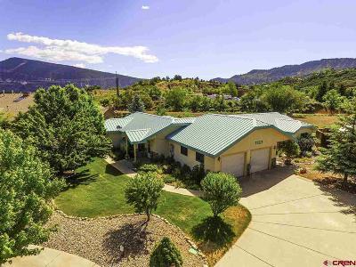 Durango Condo/Townhouse For Sale: 30 Sunshine Court