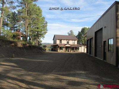Pagosa Springs Single Family Home NEW: 165 Big Horn Court